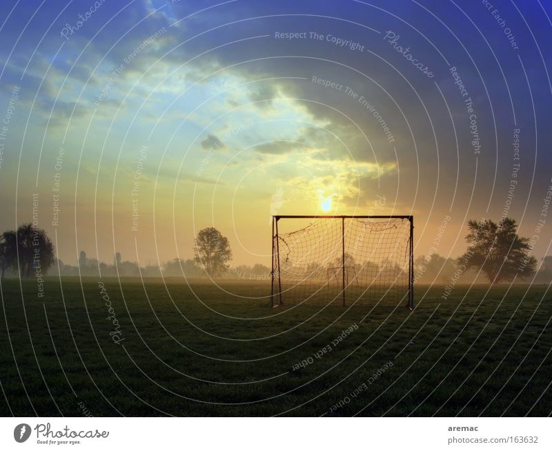 Playing Leisure and hobbies Soccer Large Sports Training Football pitch Ball sports Sunrise Morning Sporting grounds Sporting Complex