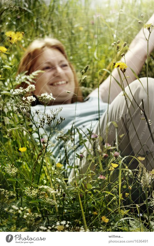 adult, mature woman lies in the high grass and laughs Woman Adults Meadow Flower meadow To enjoy Smiling Lie Natural Joy Happy Happiness Contentment