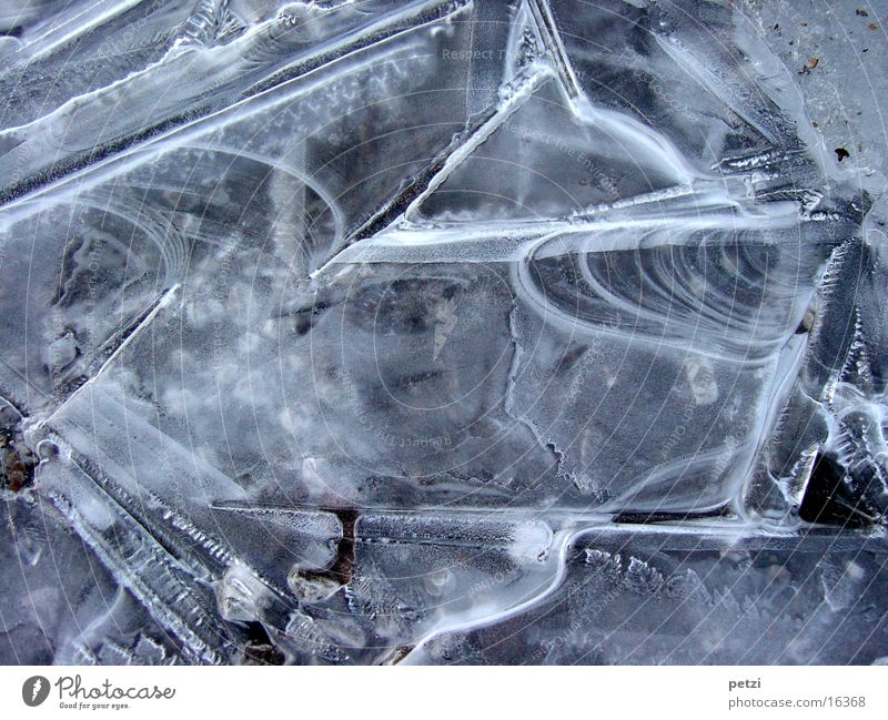 ice layer Nature Ice Frost Street Esthetic Exceptional Thin Beautiful Fragile Colour photo Exterior shot Pattern Bird's-eye view