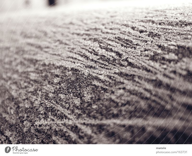 Winter Cold Gray Ice Bright Esthetic Frost Decoration Protection Transience Sculpture Coat Close-up Crystal structure Surface