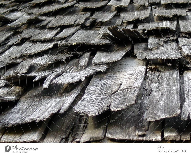 shingle roof Craft (trade) Roof Dry Roofing tile Charcoal gray Derelict bent up Colour photo Exterior shot Worm's-eye view