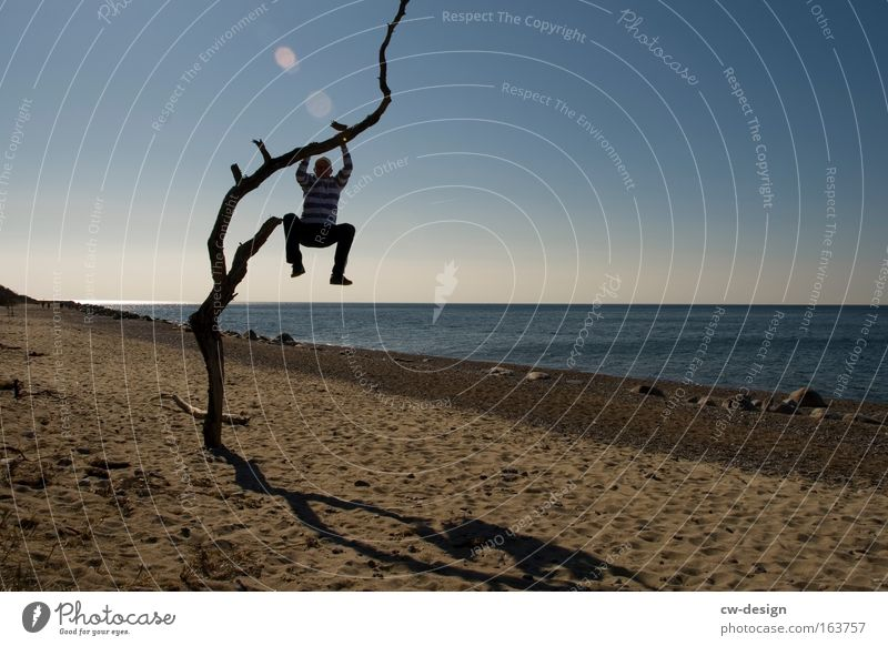 Human being Man Water Tree Ocean Summer Beach Loneliness Relaxation Lake Coast Gloomy Vantage point Climbing Tree trunk Go up