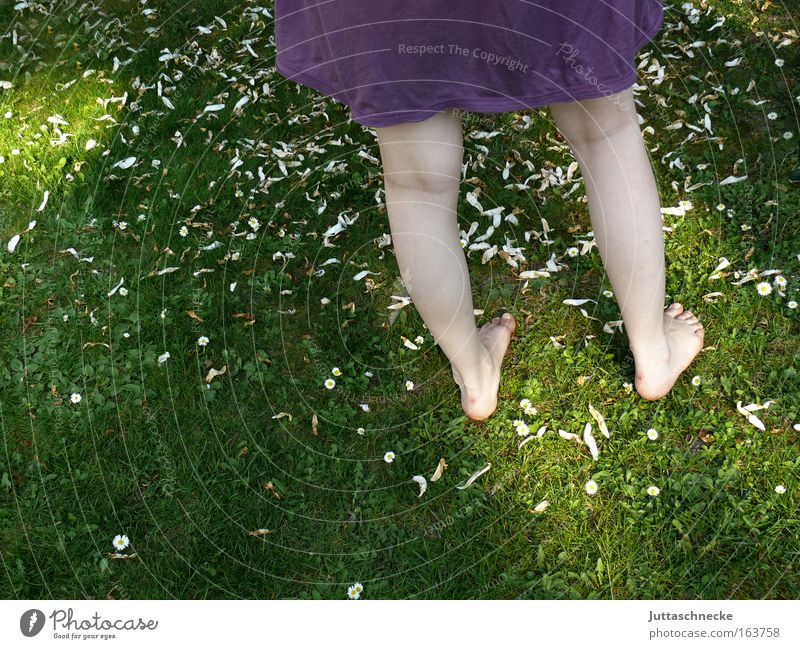 Woman Human being Nature Youth (Young adults) Summer Joy Adults Relaxation Feminine Meadow Grass Garden Spring Legs Park