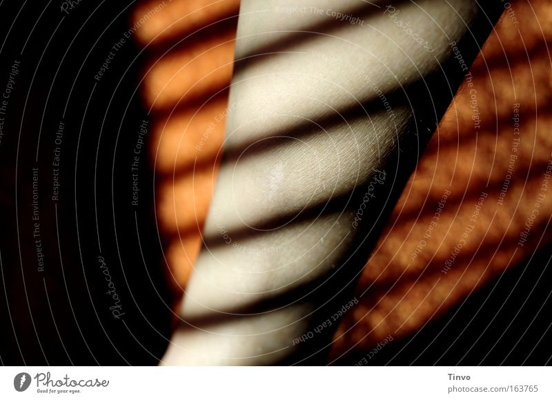 Black Legs Line Orange Arm Skin Striped Venetian blinds Shaft of light