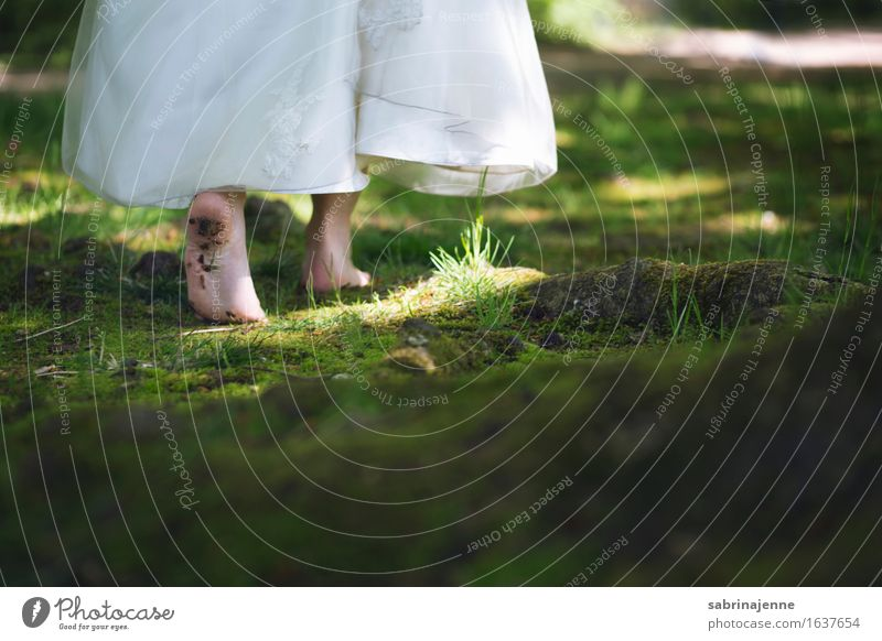 Human being Woman Youth (Young adults) Young woman Forest 18 - 30 years Adults Feminine Couple Feet Fresh Wedding Dress Delicate Moss Barefoot