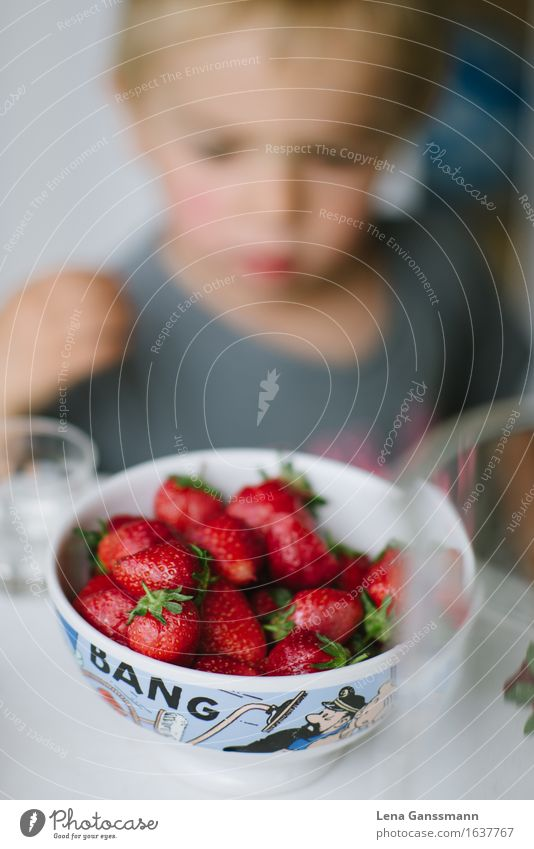 Bang! Strawberries! Fruit Strawberry Organic produce Vegetarian diet Finger food Bowl Healthy Healthy Eating Summer Summer vacation Toddler Boy (child) 1