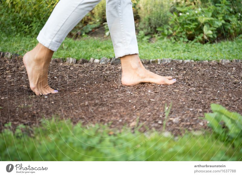 Walking barefoot in nature Lifestyle Healthy Athletic Leisure and hobbies Vacation & Travel Tourism Trip Summer Hiking Garden To go for a walk Promenade