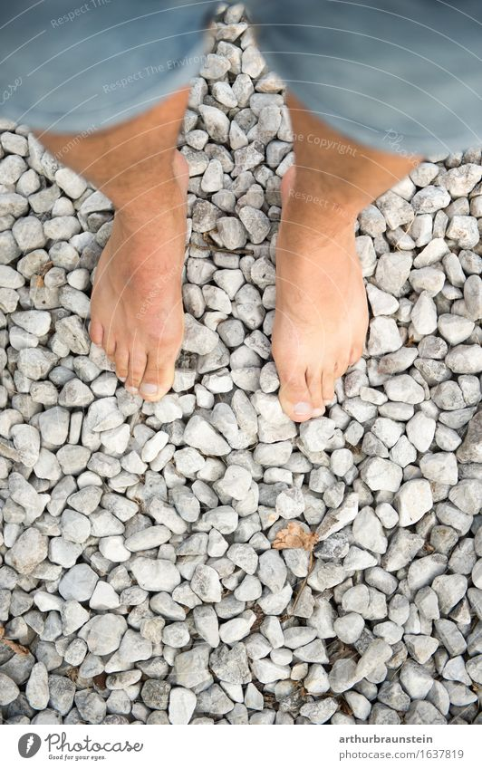 Walk barefoot on stones Barefoot Going Stand Bird's-eye view Jeans Gravel beach Pebble Pebble beach Subsoil Coast Stone Exterior shot Nature Beach