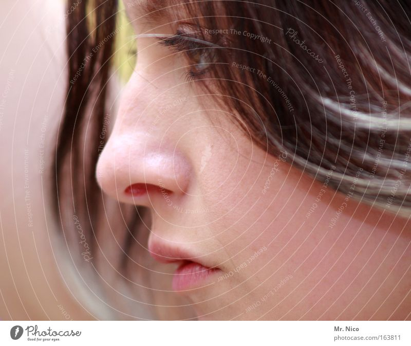 natural born woman Woman Face Beautiful Delicate Skin Lips One-eyed Portrait photograph Profile Obstinate Trust Nose Cheek Perspective