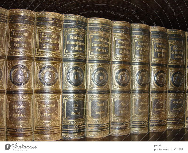 brock house Book Old Gold lettering volumes leather binding Colour photo Interior shot Central perspective Long shot