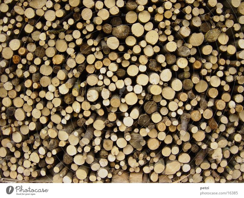 Nature Flower Environment Peace Craft (trade) Wood Cut Agricultural crop Stack of wood