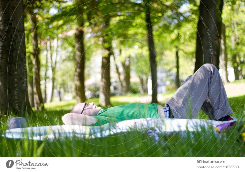 Human being Nature Youth (Young adults) Plant Green Tree Young man Relaxation Calm Joy Forest 18 - 30 years Adults Environment Meadow Grass