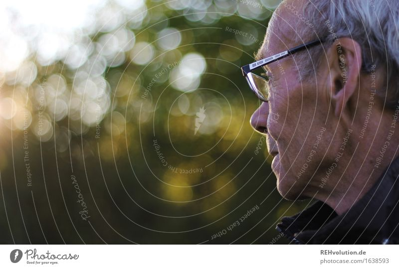Senior in profile with glasses Human being Masculine Man Adults Male senior 1 60 years and older Senior citizen Environment Nature Landscape tree Park