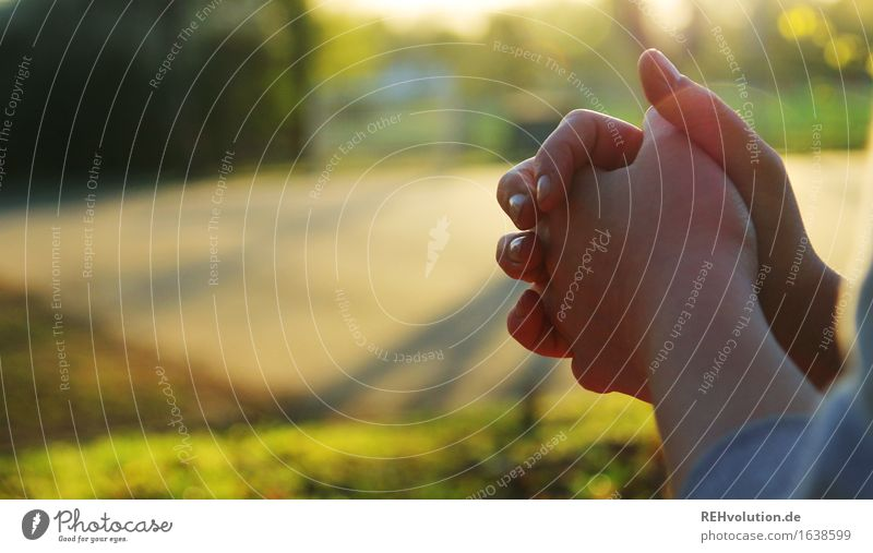 pray Feminine Hand 1 Human being Environment Nature Landscape Park Meadow Strong Green Self-confident Peaceful Goodness Altruism Humanity Help Grateful