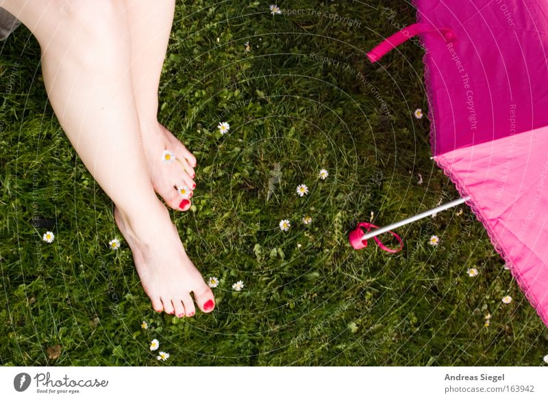 Green Relaxation Meadow Feminine Spring Feet Park Legs Contentment Pink Fresh Happiness Uniqueness Umbrella Joie de vivre (Vitality)