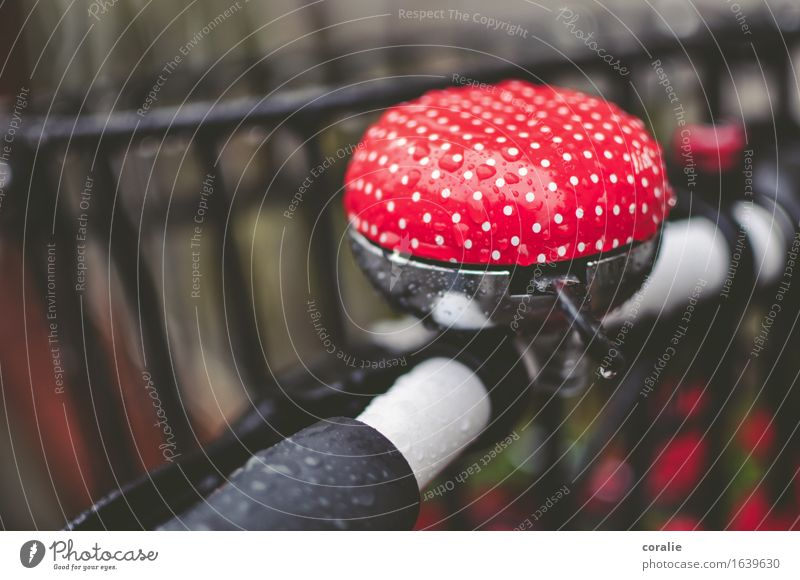Beautiful White Red Autumn Funny Playing Small Exceptional Rain Illuminate Bicycle Cycling Signage Wet Cute Cycling tour
