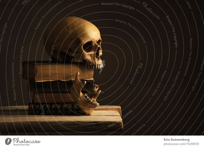 Skull on old books Hallowe'en Human being Head Art Work of art Painting and drawing (object) Print media Book Library Reading Paper Wood Old Retro Education