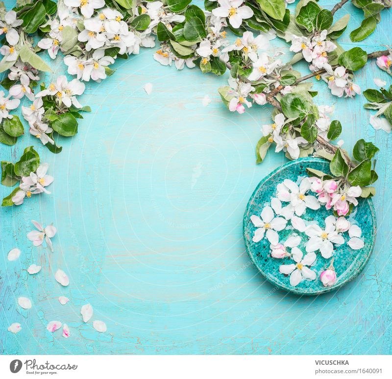 Nature Blue Beautiful Summer Water White Flower Relaxation Leaf Interior design Blossom Style Design Decoration Table Wellness