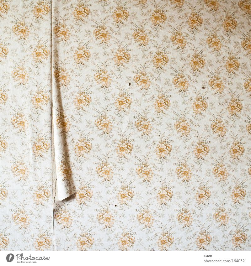 Old Wall (building) Wall (barrier) Room Flat (apartment) Authentic Design Living or residing Decoration Broken Retro Wallpaper Nostalgia Stagnating Flake off Old fashioned