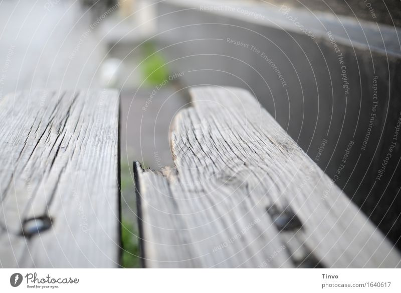 broken Wood Old Gray Bench Table Broken aborted Brittle Patina Weathered Subdued colour Exterior shot Close-up Deserted Copy Space right Copy Space top