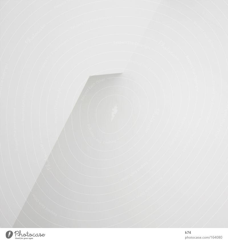 White Calm Cold Gray Bright Architecture Design Elegant Esthetic Simple Clean Luxury Simplistic Zen