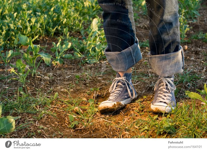 Chucks are made for any terrain! Colour photo Exterior shot Copy Space left Evening Deep depth of field Footwear Hiking Joy Nature