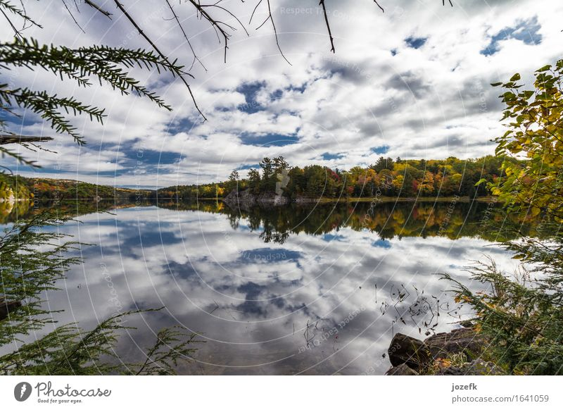 Clouds Nature Vacation & Travel Tree Landscape Leaf Clouds Autumn Lake Serene Pond Wild plant