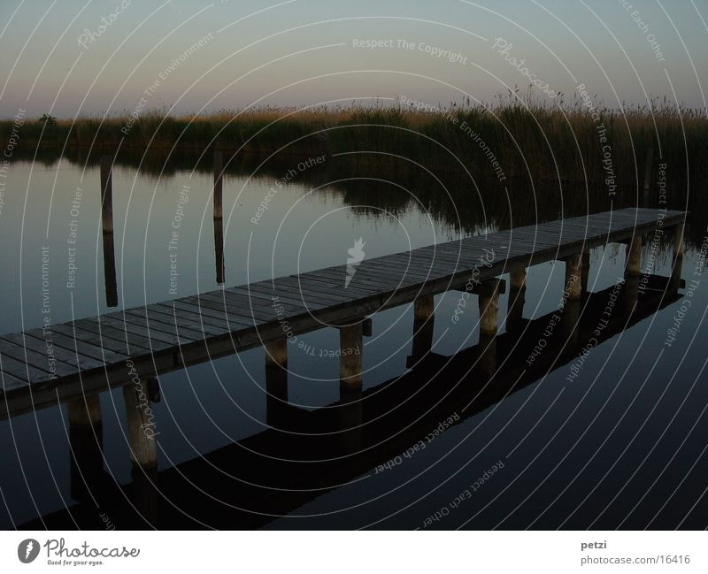 The footbridge Water Lake Emotions Moody Sadness Lovesickness Homesickness Loneliness Footbridge Joist Common Reed Dusk Sunset Colour photo Multicoloured