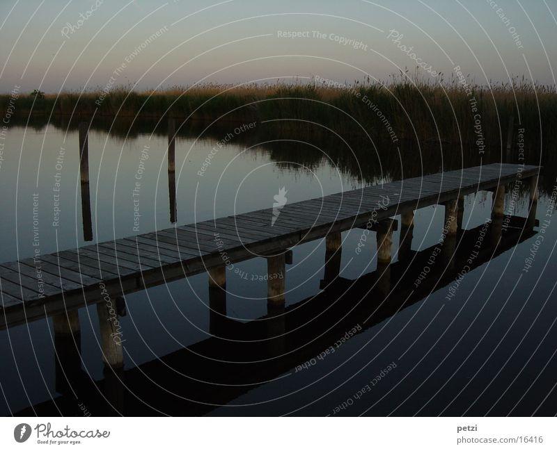 Water Loneliness Emotions Sadness Lake Moody Common Reed Footbridge Dusk Lovesickness Homesickness Grass Joist
