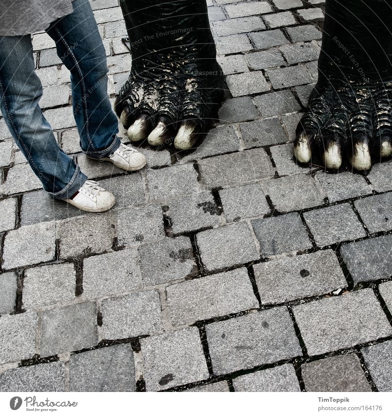 Human being Animal Adults Street Legs Couple Feet In pairs Stand Footwear Jeans Cobblestones Partner Sneakers Paw