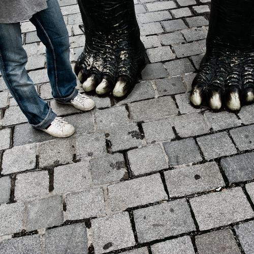 My new friend Couple Partner Legs Feet 1 Human being Street Jeans Sneakers Claw Paw Stand Elephant Pedestrian precinct Cobbled pathway Paving stone In pairs