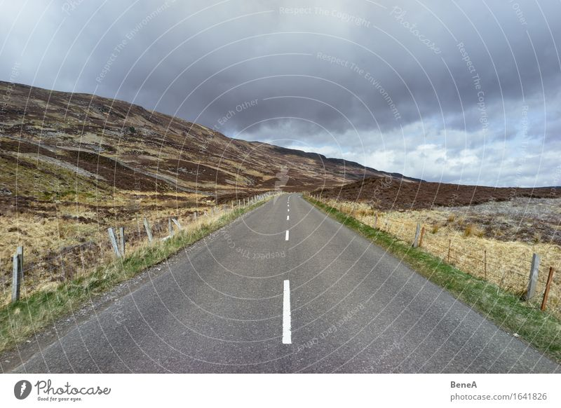 How many roads must a man walk down? Nature Landscape Animal Sky Clouds Storm clouds Meadow Field Hill Scotland Deserted Traffic infrastructure Road traffic
