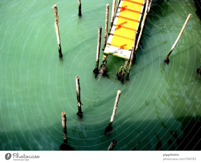 Water Green Calm Yellow Wood Jump River End Footbridge Jetty River bank Wooden stake