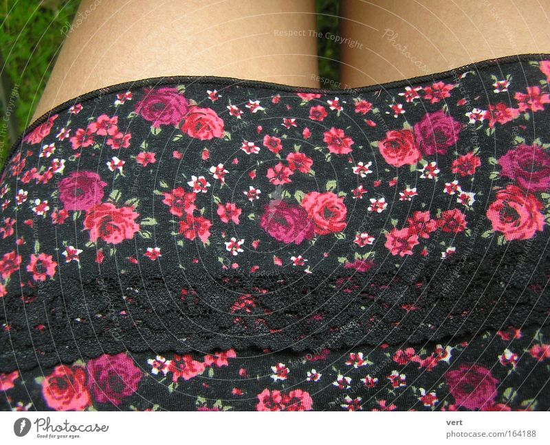 bavarian_summer Colour photo Exterior shot Detail Pattern Day Human being Feminine Woman Adults Legs Summer Beautiful weather Meadow Clothing Skirt Dress Edge