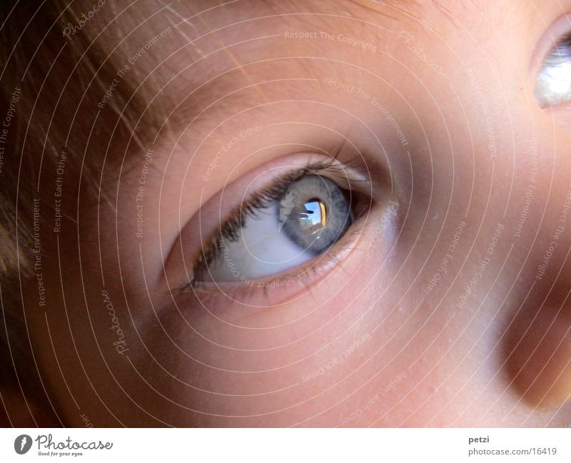 Childlike moment Hair and hairstyles Face Eyes Blue Cheek Colour photo Multicoloured Exterior shot Detail Central perspective Forward