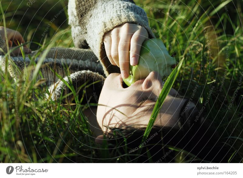 Woman Nature Hand Calm Relaxation Meadow Grass Contentment Lighting Healthy Eating Fresh Break Soft Lie Delicate
