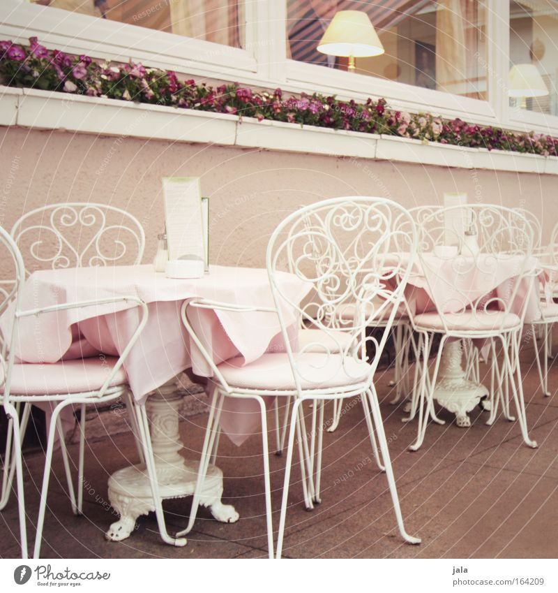 White Pink Contentment Elegant Nutrition Table Sweet Chair Kitsch Café Society Candy Restaurant Well-being Luxury Gastronomy