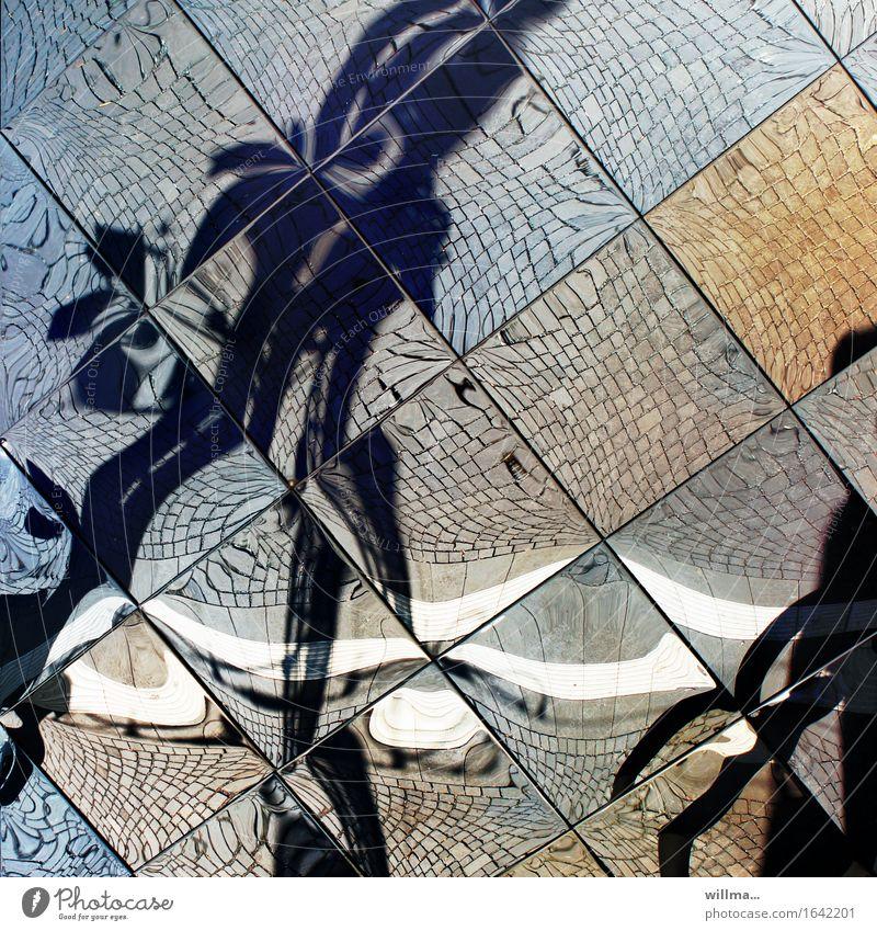 Human being Crazy Mirror Tile Irritation Surrealism Fantasy Mirror image Dream world