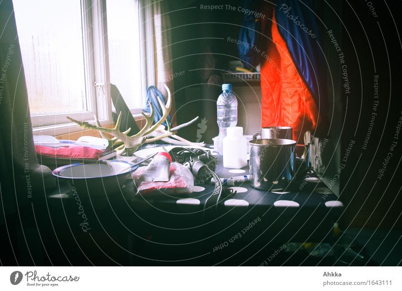 Vacation & Travel Loneliness Calm Window Moody Together Living or residing Wild Room Perspective Table Adventure Joie de vivre (Vitality) Wet Protection Safety
