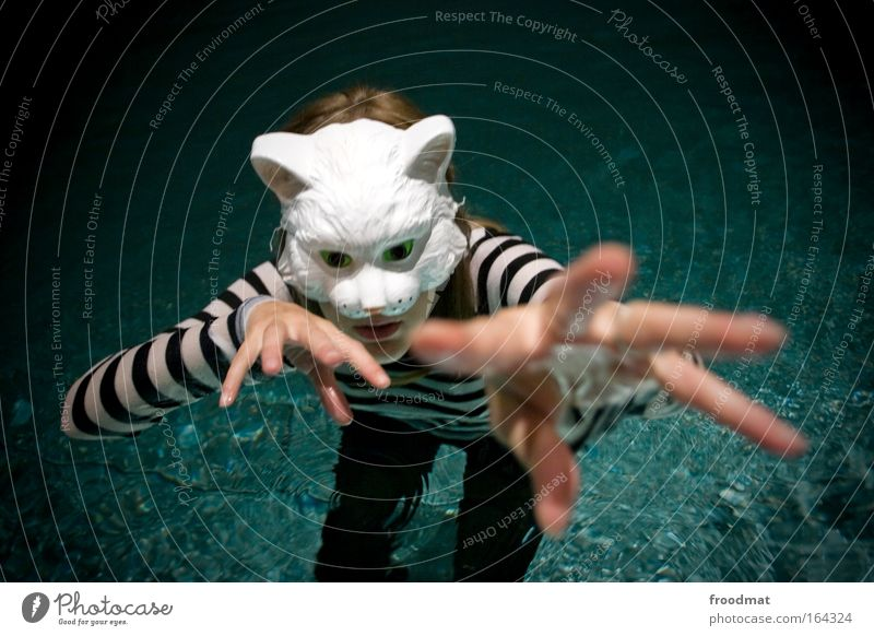Cat Human being Woman Hand Beautiful Animal Adults Feminine Swimming & Bathing Arm Uniqueness Communicate Clean Mask Strong Chest