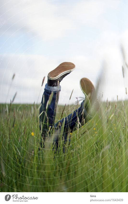 stroke of luck Human being Feminine Woman Adults Life Legs Feet 1 Environment Nature Landscape Spring Grass Meadow Jeans Footwear Discover Playing Romp