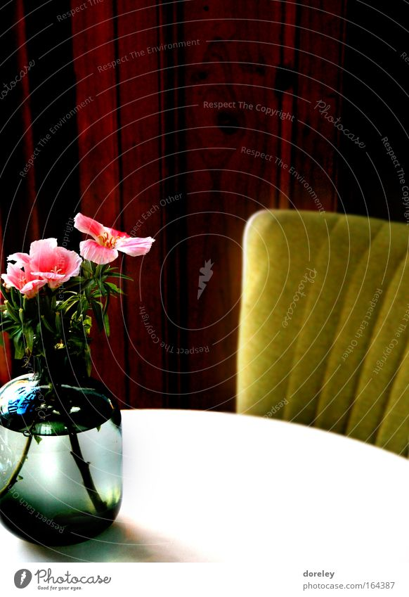 Beautiful White Plant Calm Relaxation Blossom Wood Brown Room Pink Gold Table Rose Esthetic Retro Chair