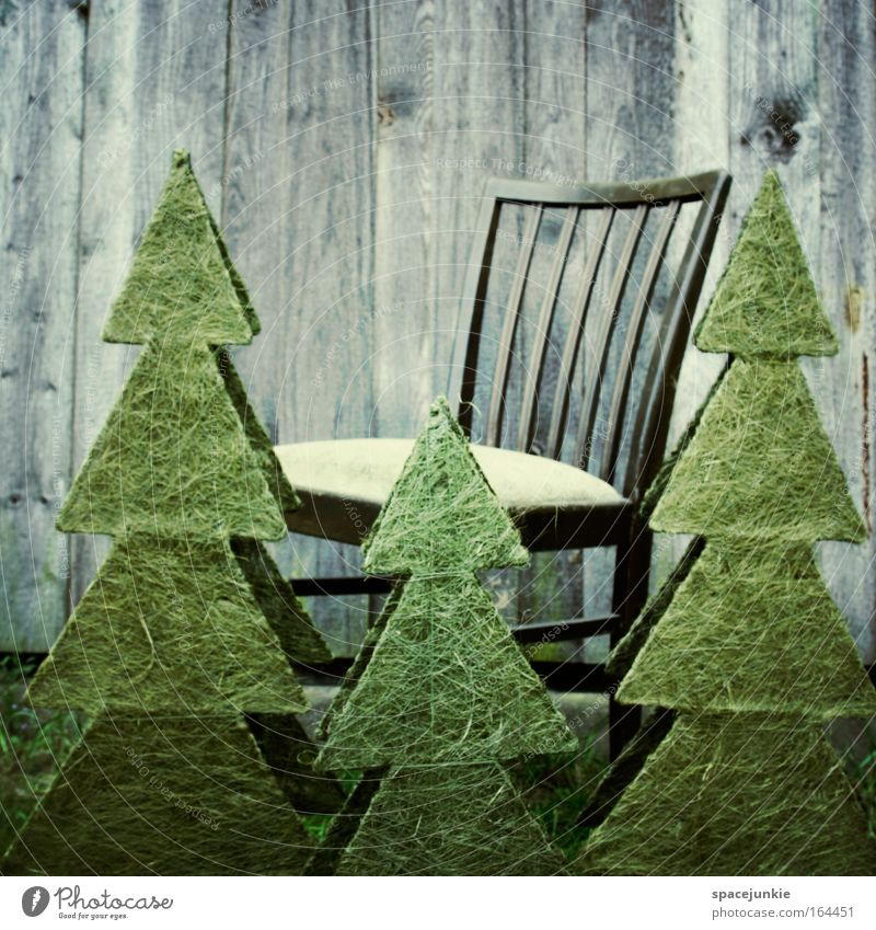 Nature Loneliness Calm Relaxation Wood Wait Chair Education Artist Parenting Office work