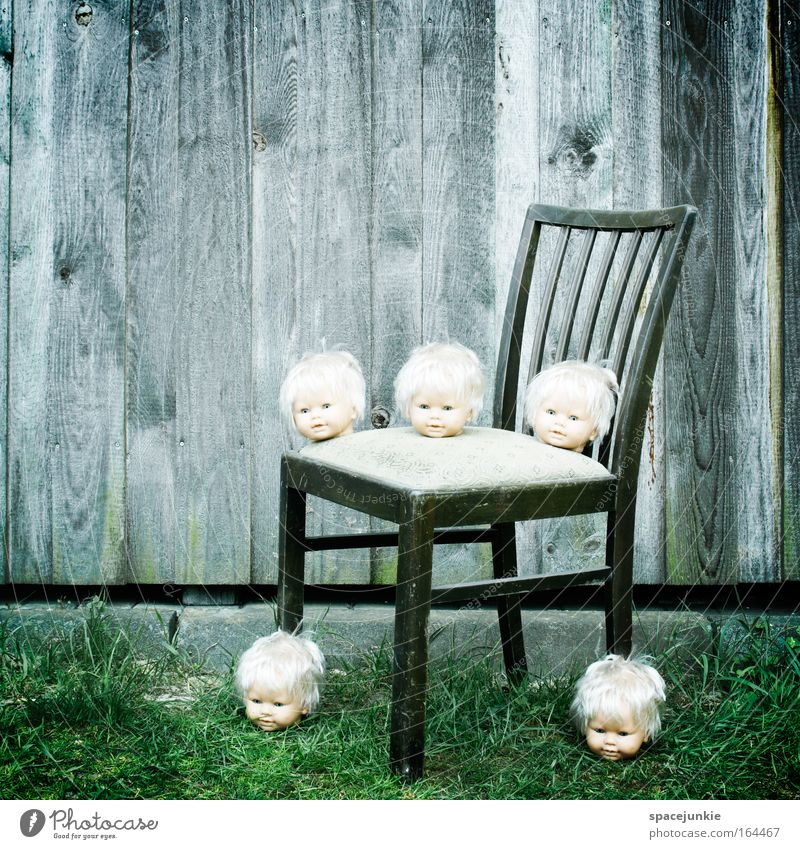 doll doctor Colour photo Exterior shot Copy Space top Face Head Doll Wood Observe Together Threat Creepy Small Fear Stagnating