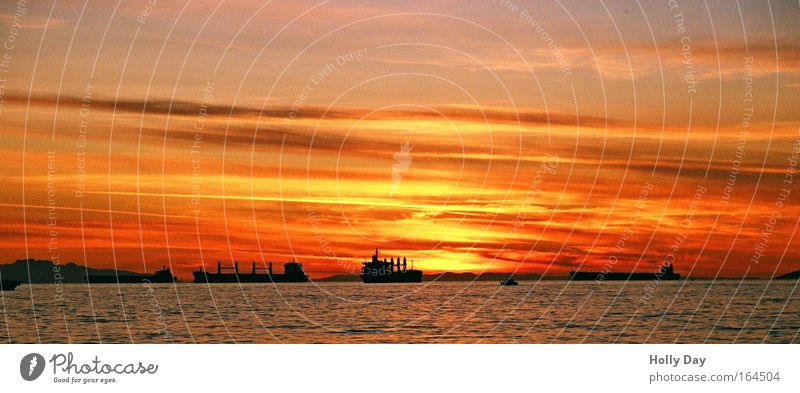 Sunset & Ships Logistics Sky Clouds Horizon Sunrise Summer Beautiful weather Coast Ocean Pacific Ocean Container ship Oil tanker Watercraft