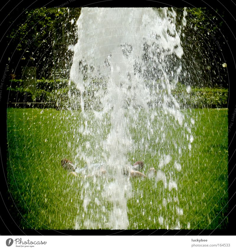 Water Green Summer Calm Relaxation Meadow Cold Grass Garden Warmth Spring Park Contentment Lie Drops of water Sleep