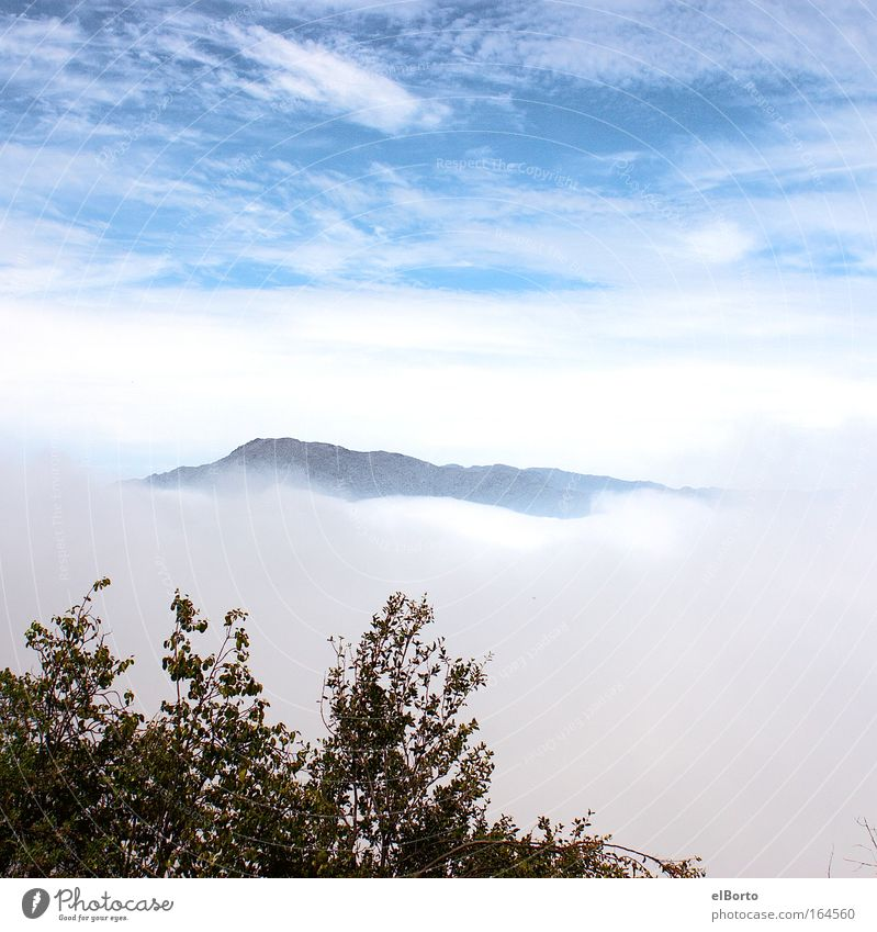 Sky Nature Vacation & Travel Clouds Loneliness Far-off places Freedom Mountain Landscape Fog Hiking Success Hill Longing Peak Wanderlust