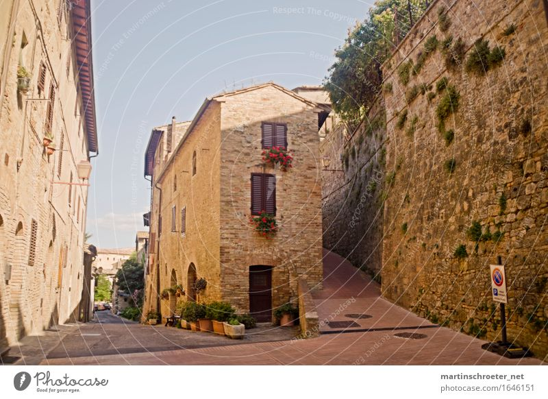 In the alleys of San Gimignano Summer Beautiful weather Warmth Village Small Town Downtown Deserted House (Residential Structure) Dream house Hut