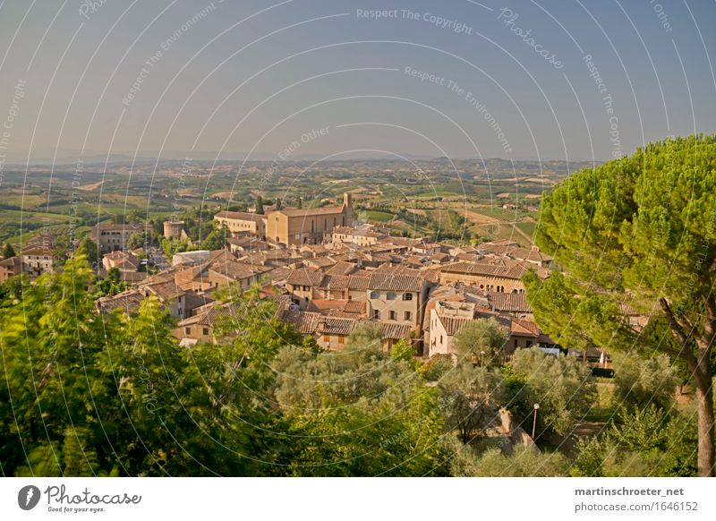San Gimignano Vacation & Travel Tourism Trip Far-off places Freedom Sightseeing Summer Summer vacation Sun Dream house Architecture Landscape Beautiful weather