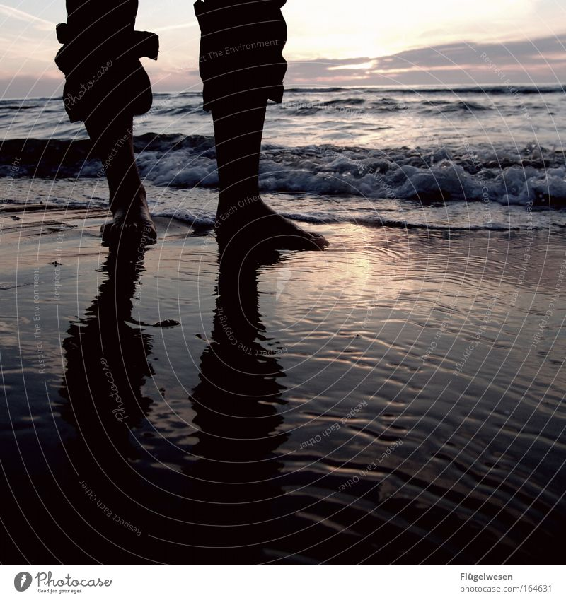 Water Ocean Loneliness Feet Legs Baltic Sea North Sea Shorts Barefoot Human being Sunset